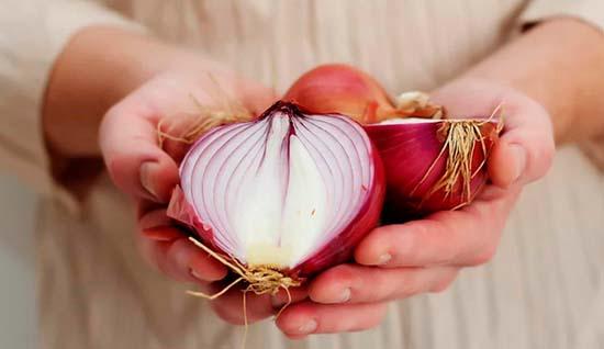 Tarot cebolla Los mejores hechizos con cebolla para el amor Tarot