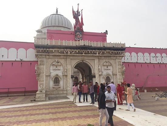 Tarot Templo-de-las-ratas-India Conoce los templos más raros del mundo Experiencias